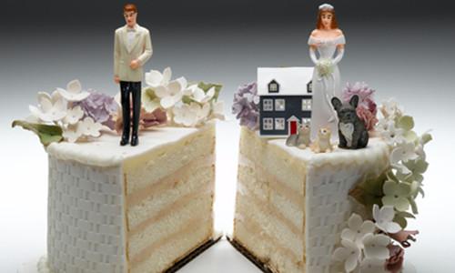 Раздел земельного участка и прочего имущества при разводе